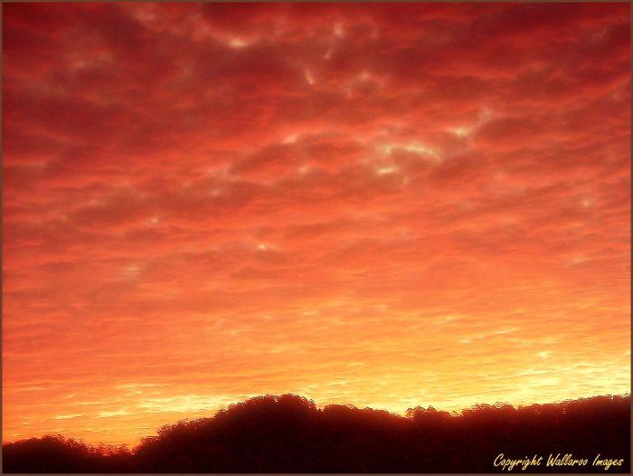 redhill sunset