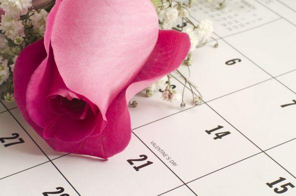 Single pink rose on a calender resting next to Valentine's Day